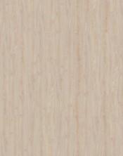 """Ceniza 55401 """"Shelsley Ash"""""""