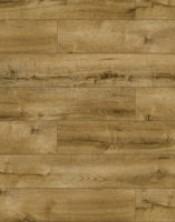 47201 Romero Oak