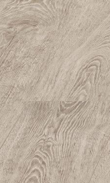 3491 Ceylon Oak