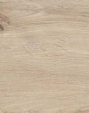 Oak 6501