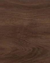 Oak 6740