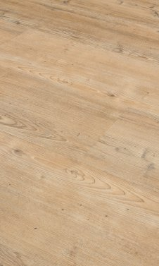 Pine 4203