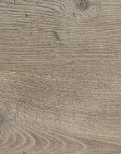 Pine 4204