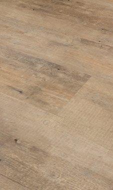 Pine 4302
