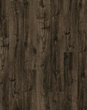 V2131-40091 Black City Oak